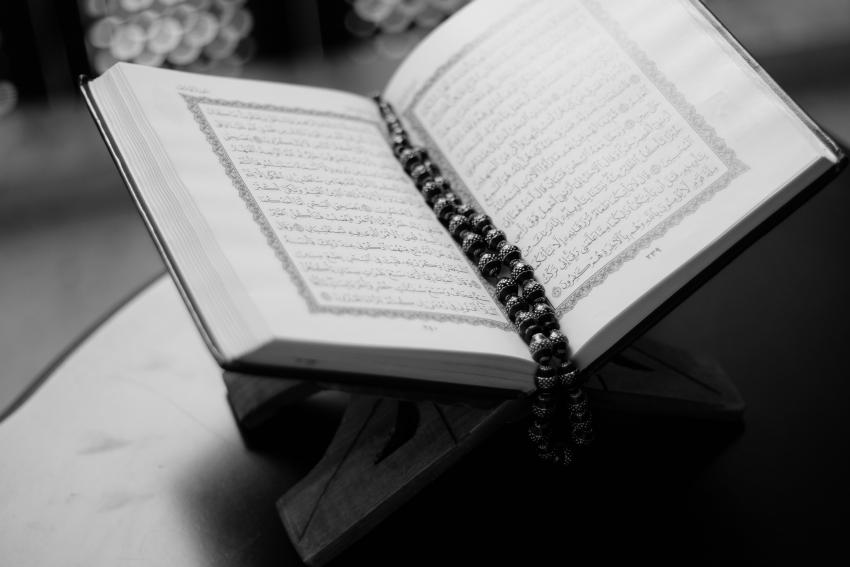 Ma découverte dans l'Islam